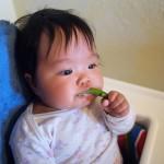 Tập cho bé tự ăn theo phương pháp ăn dặm BLW được nhiều mẹ áp dụng
