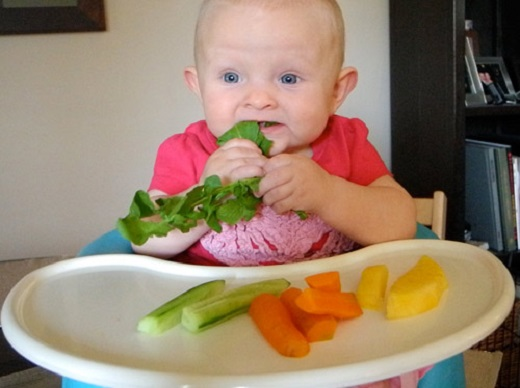 tìm hiểu về phương pháp ăn dặm BLW 8