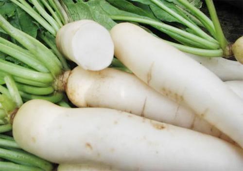 củ cải trắng cho bé ăn dặm
