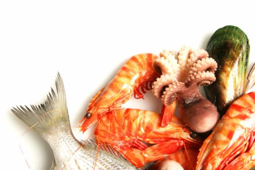 cho bé ăn hải sản đúng cách 2