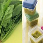 Hướng dẫn cách nấu cháo cải bó xôi cho bé giàu dinh dưỡng tốt cho hệ tiêu hóa