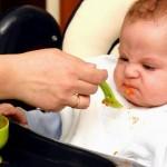 Có nên cho bé ăn dặm trước 6 tháng tuổi và cho trẻ ăn dặm những gì?